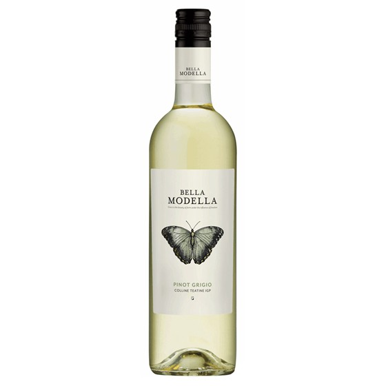 Bella-Modella-Pinot-Grigio-Teatine